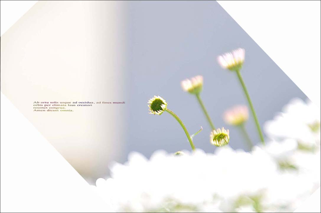 f0198771_045795.jpg