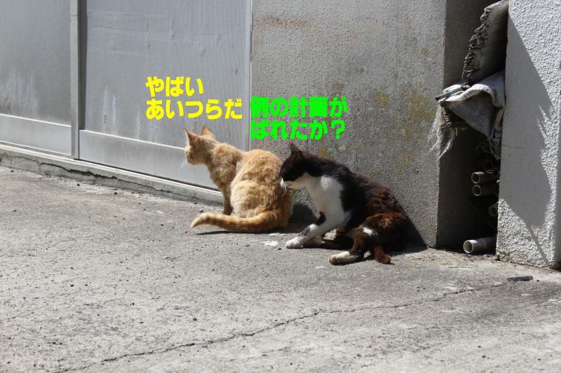 f0257085_200219.jpg