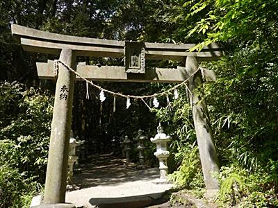 広い公園、いつもと違うコースを歩いてみました、大分の高尾山自然公園です_b0175688_13353259.jpg