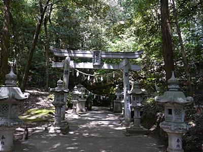 広い公園、いつもと違うコースを歩いてみました、大分の高尾山自然公園です_b0175688_13373010.jpg