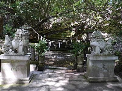 広い公園、いつもと違うコースを歩いてみました、大分の高尾山自然公園です_b0175688_1338129.jpg