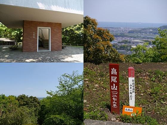 広い公園、いつもと違うコースを歩いてみました、大分の高尾山自然公園です_b0175688_13565375.jpg