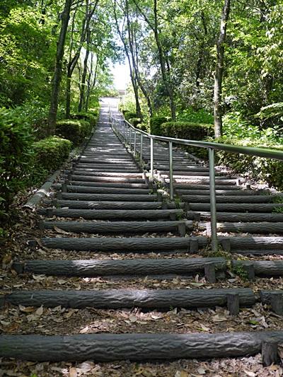 広い公園、いつもと違うコースを歩いてみました、大分の高尾山自然公園です_b0175688_1401373.jpg