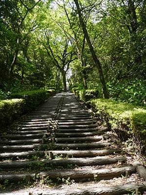 広い公園、いつもと違うコースを歩いてみました、大分の高尾山自然公園です_b0175688_1431023.jpg