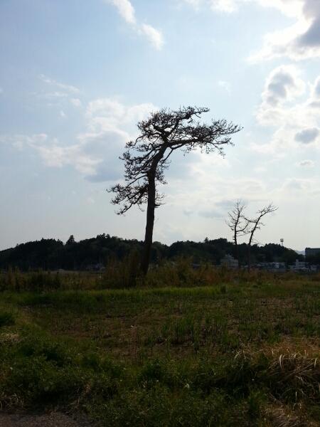 福島にて Fukushima 20130505_a0104020_2121646.jpg