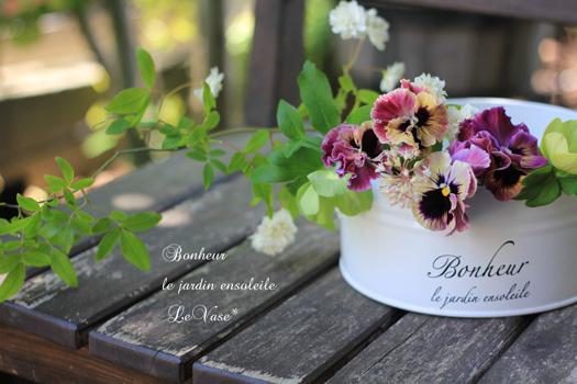 庭の花_e0158653_1327578.jpg