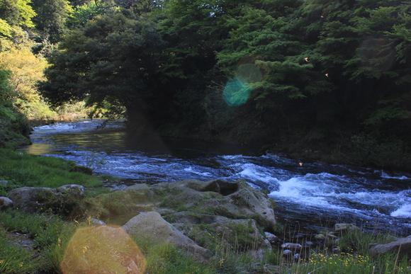 山中温泉のグルメ_d0202264_7572838.jpg