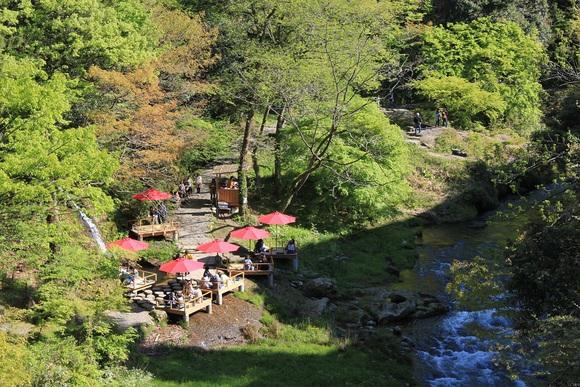山中温泉のグルメ_d0202264_7583735.jpg