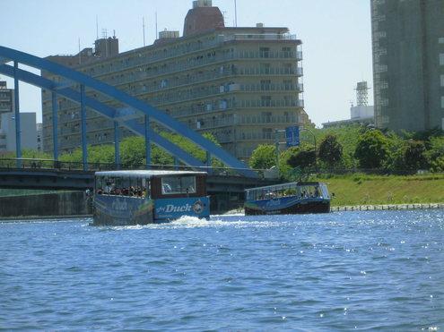 連休風景「旧中川」_c0249569_10104141.jpg