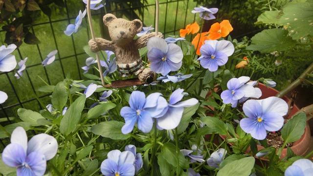 花達が教えてくれる素敵な春、自然美の素晴らしさ、花が教える素敵な環境_d0181492_857222.jpg