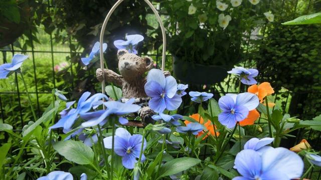 花達が教えてくれる素敵な春、自然美の素晴らしさ、花が教える素敵な環境_d0181492_857243.jpg
