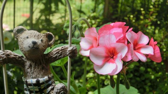 花達が教えてくれる素敵な春、自然美の素晴らしさ、花が教える素敵な環境_d0181492_8574210.jpg