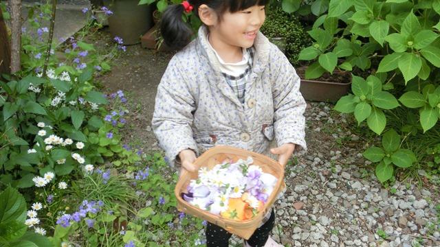 花達が教えてくれる素敵な春、自然美の素晴らしさ、花が教える素敵な環境_d0181492_90071.jpg