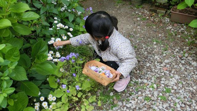花達が教えてくれる素敵な春、自然美の素晴らしさ、花が教える素敵な環境_d0181492_902938.jpg