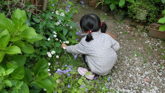 花達が教えてくれる素敵な春、自然美の素晴らしさ、花が教える素敵な環境_d0181492_91517.jpg