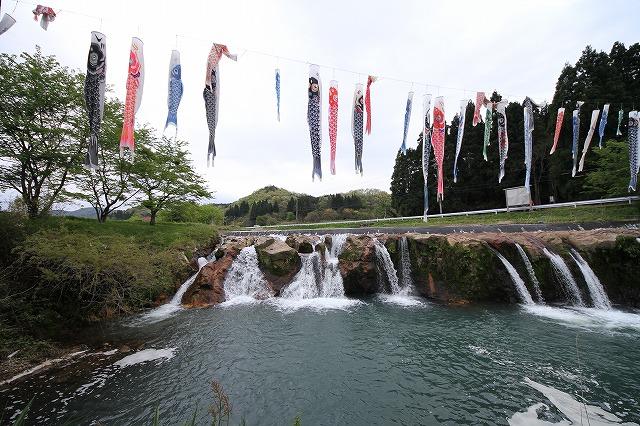 滝とこいのぼり_c0155950_753518.jpg