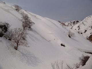 焼山2400m(少し写真追加)_e0064783_211396.jpg