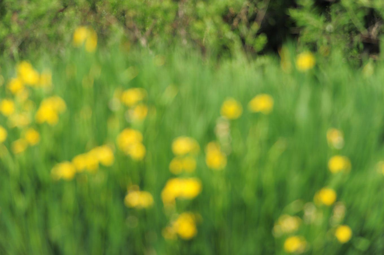 f0133213_20571596.jpg