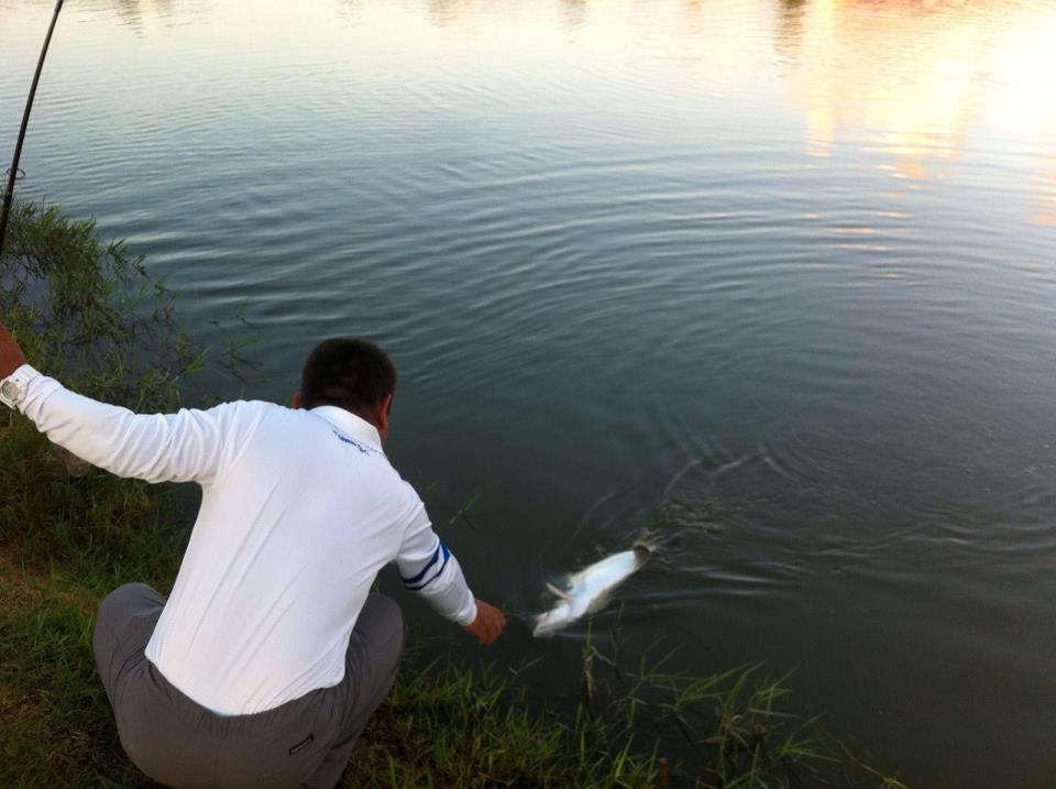 タイランド 太田さん Arriver69Dance で釣る。_a0153216_23361071.jpg