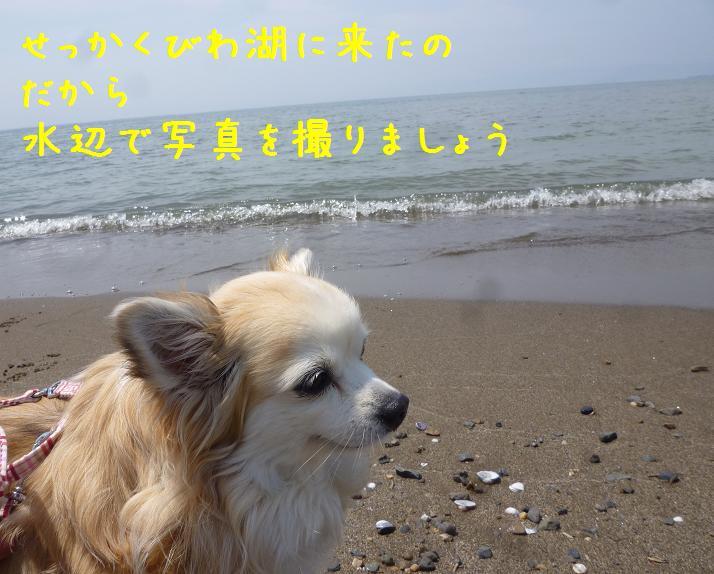 b0138430_14581511.jpg