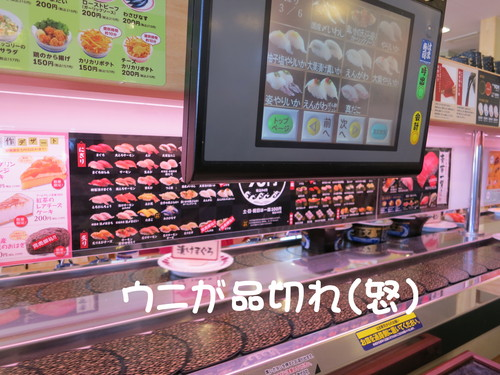 斑入り ソヨゴ 入荷!2mを超える商品は日本で1本だけ( たぶん?)_b0200291_22312558.jpg