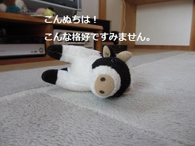 f0068501_15145119.jpg