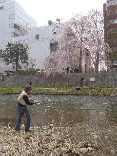 春の珍事_f0105112_7252391.jpg