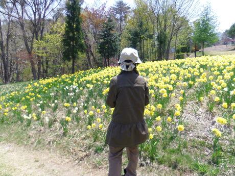 五月晴れの春キャンプ!_e0036217_18515020.jpg