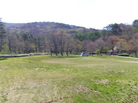 五月晴れの春キャンプ!_e0036217_18595255.jpg