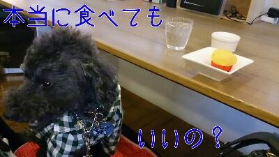 b0236618_23402996.jpg