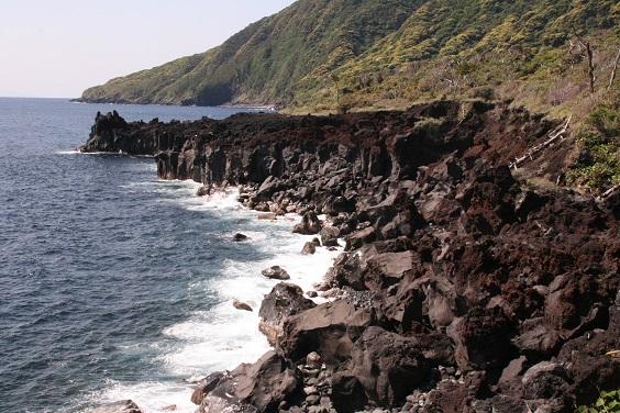 大島キャンプ_b0027781_14375021.jpg
