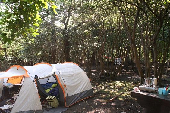 大島キャンプ_b0027781_1451100.jpg