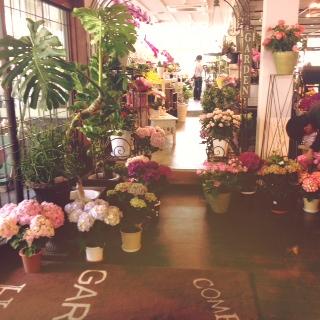 お花 & カフェ。_d0178587_15181588.jpg