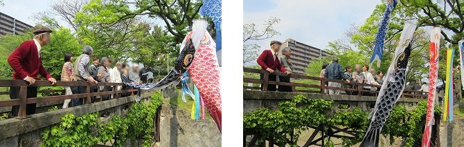 鯉のぼり<アクティブライフ山芦屋・デイサービス>_c0107602_10351339.jpg