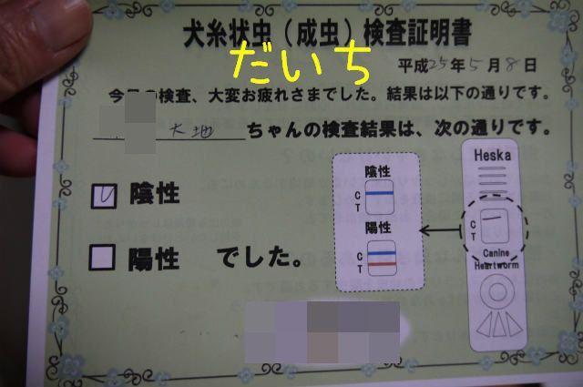 それぞれの検査_f0218911_6153853.jpg