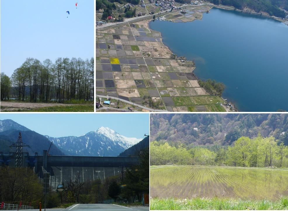 新緑の木崎湖・大町ダムへ_a0212730_21103994.jpg