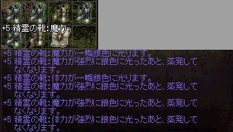 e0064647_1555218.jpg