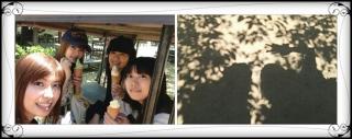 愛媛最終日には♪_a0087471_0281756.jpg