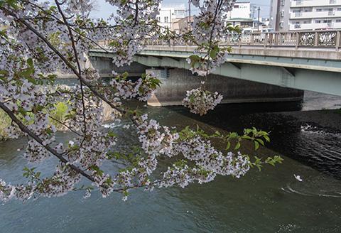 盛岡へ_c0002682_15591912.jpg