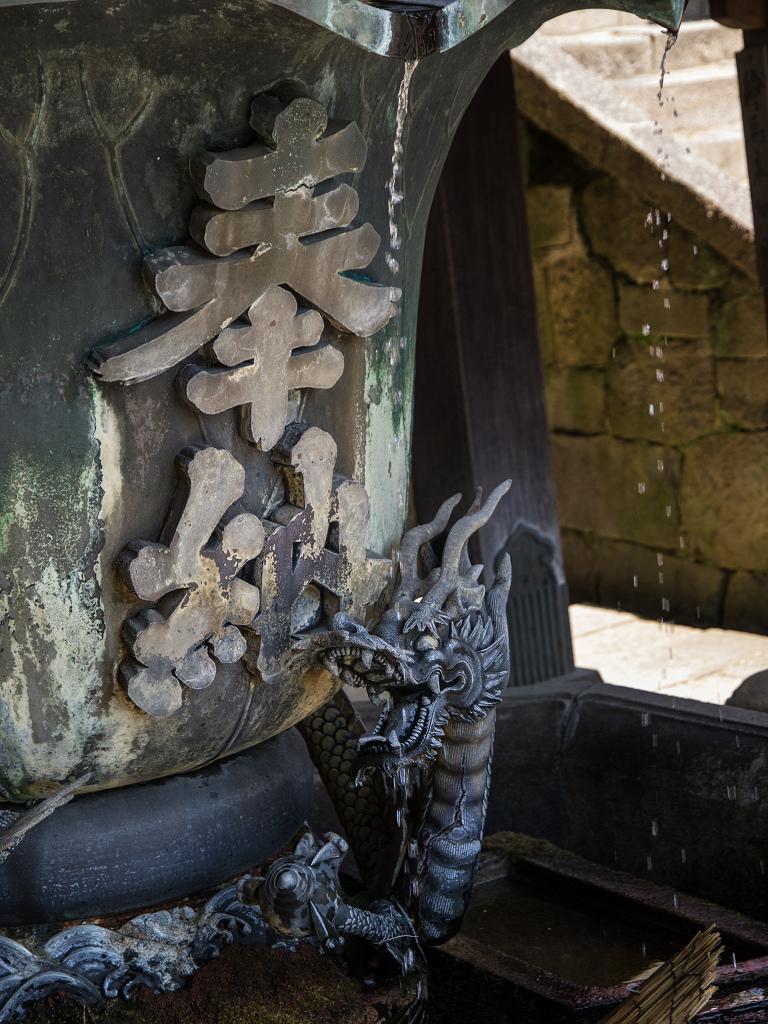 「5月の奈良公園~二月堂~」_a0133692_16335977.jpg