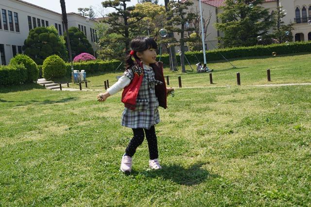 夢を現実にする関西学院大学、孫娘と関西学院大学へ、日本・韓国・中国の環境協力、復興策に日本木材を_d0181492_11101164.jpg
