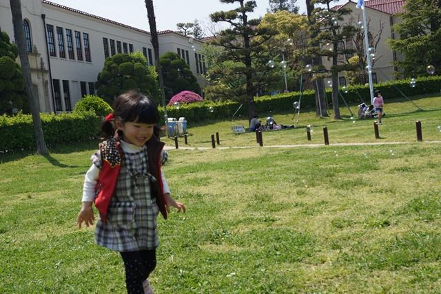 夢を現実にする関西学院大学、孫娘と関西学院大学へ、日本・韓国・中国の環境協力、復興策に日本木材を_d0181492_11101796.jpg
