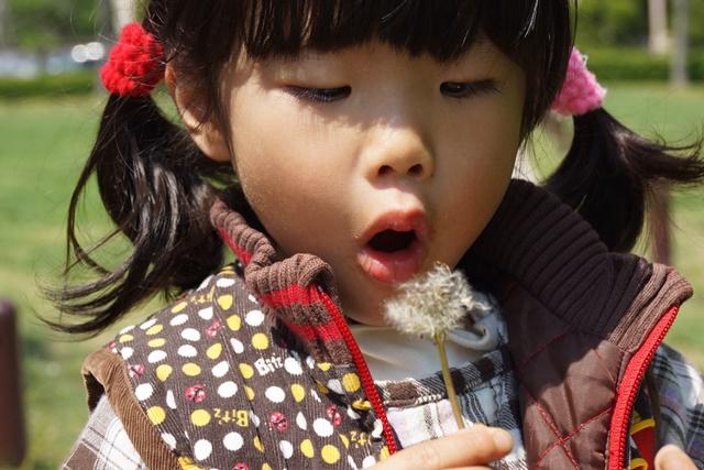 夢を現実にする関西学院大学、孫娘と関西学院大学へ、日本・韓国・中国の環境協力、復興策に日本木材を_d0181492_1193939.jpg