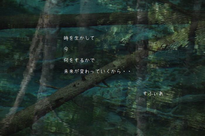 b0152416_22301485.jpg