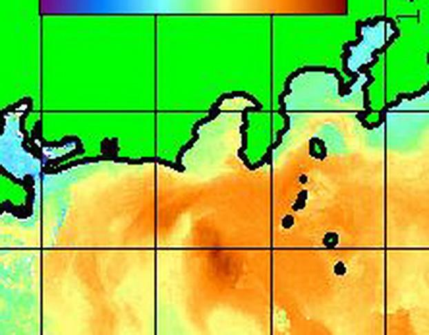 今週末の海は・・・・・【カジキ・マグロトローリング】_f0009039_1243517.jpg