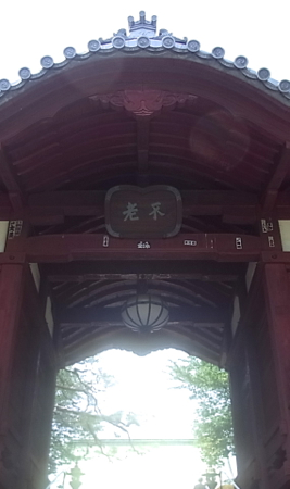 護国寺探索ぅ〜_f0164187_053938.jpg