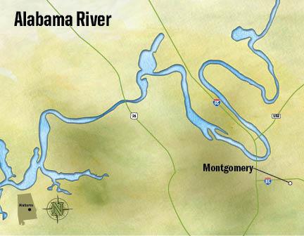 Bassmaster Elite Series #5 Alabama River, AL 初日_a0097491_904388.jpg