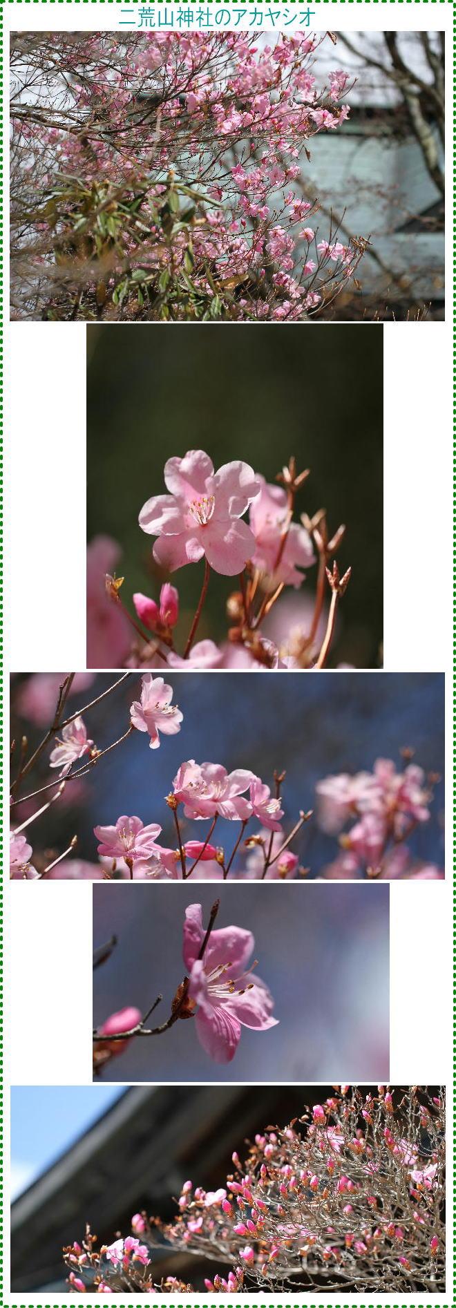 f0164592_81010100.jpg