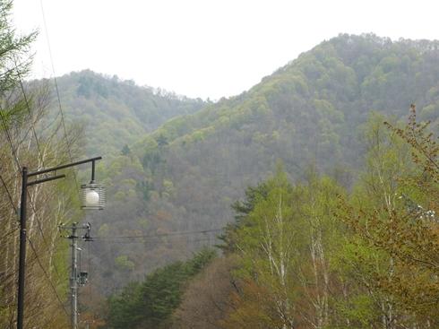 舘岩中学校から見える新緑_f0227395_15321998.jpg