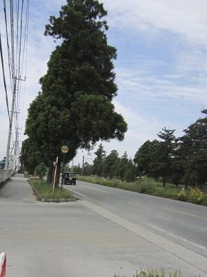 豊後街道を往く~頼山陽の詩碑~_b0228113_1044928.jpg